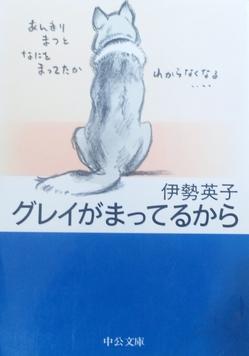 111201_01.jpg