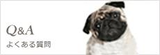 Visse's Blog